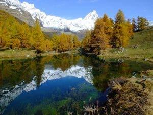 Mirror-like reflection on a lake