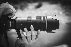 telephoto lens for wildlife photography
