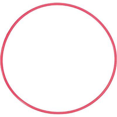 Olympus POL-EP01 O-Ring