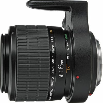 Canon f/2.8 65mm 1-5x Macro Photo Lens