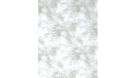 ProMaster Backdrop Cotton 10'x20' Cloud Dyed - Light Grey