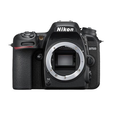 Nikon D7500 w/AF-P 18-55mm VR Lens Digital SLR Camera