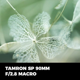 Tamron SP 90mm F2.8 Macro