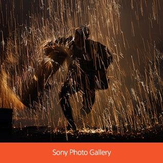Sony Photo Gallery