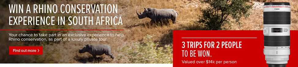 Win a Rhino Conservation Experience in South Africa